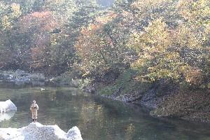 箒川の渓流釣り