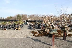 鹿沼市花木センター