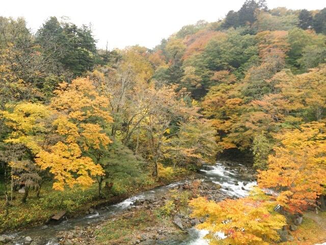 奥塩原温泉の紅葉